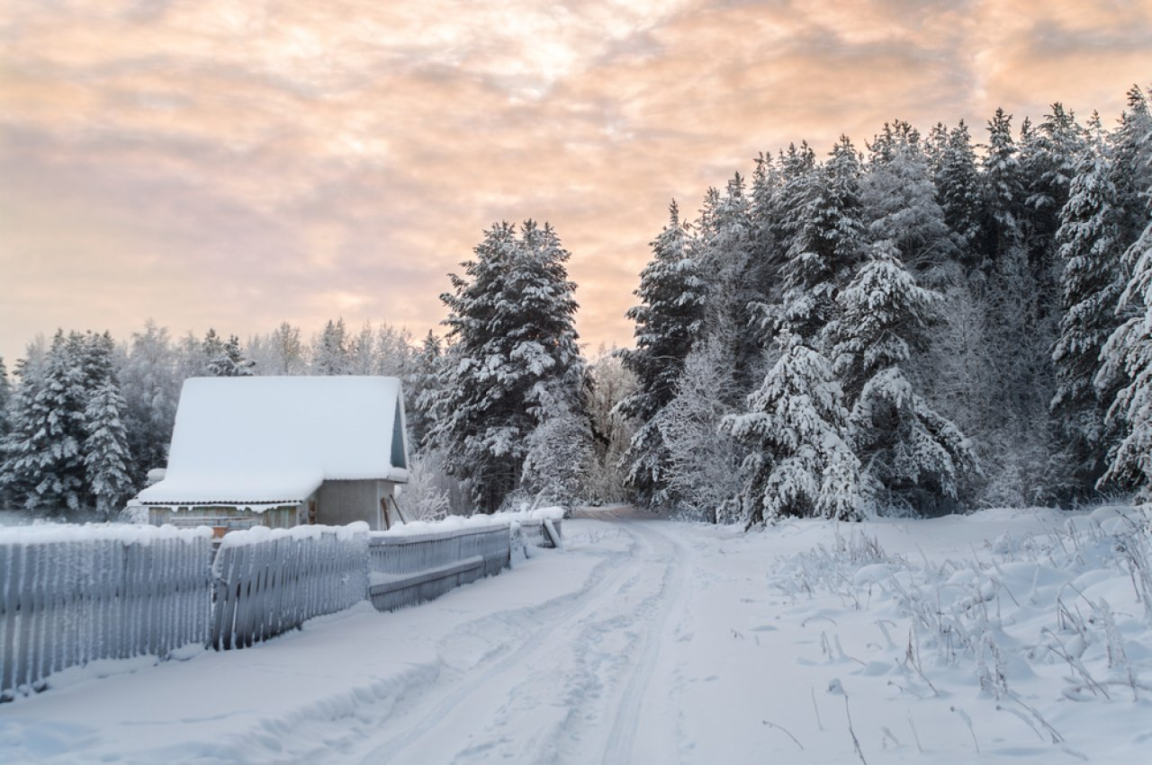 Фото: Kekyalyaynen / Shutterstock