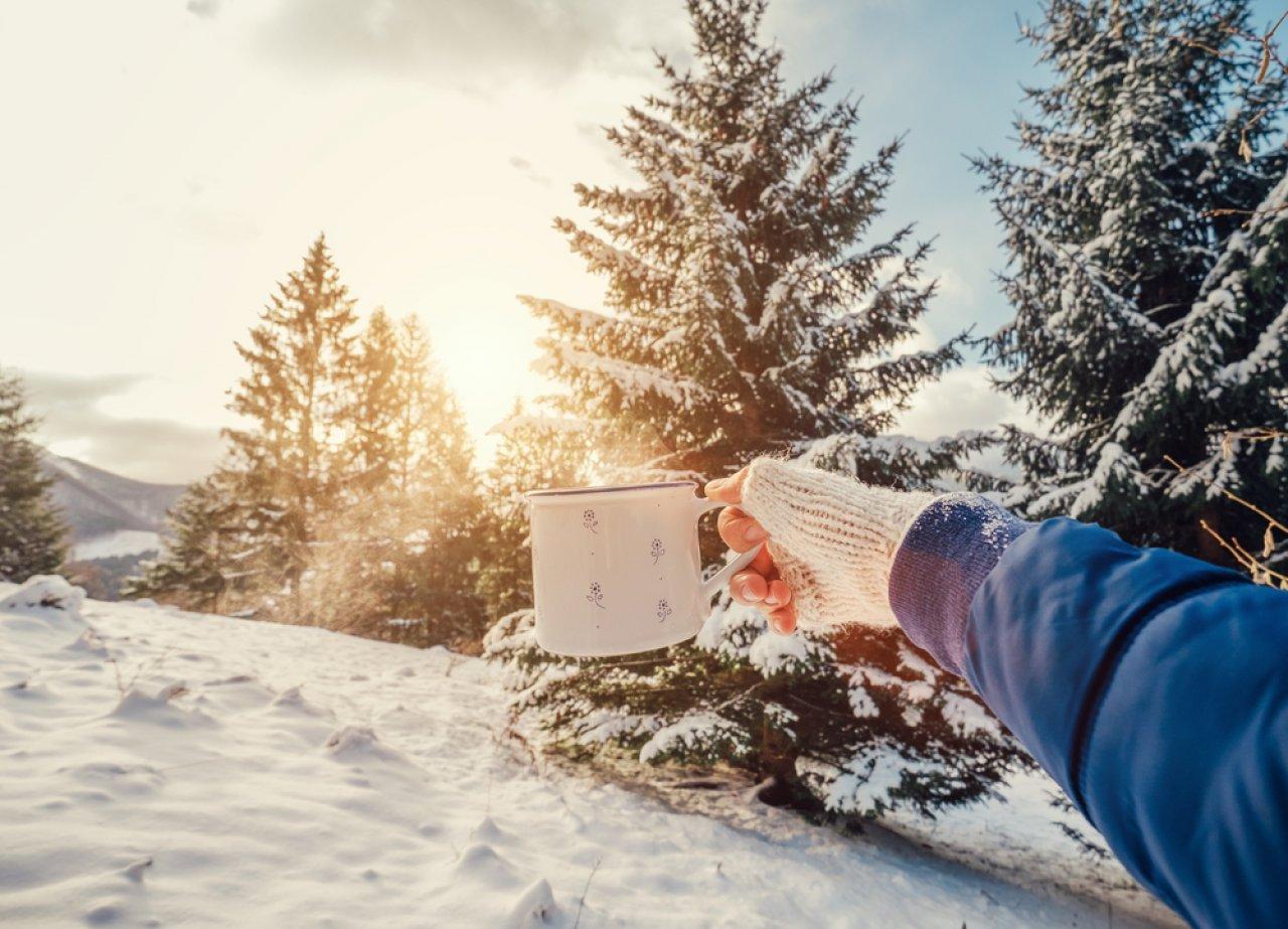 Фото: Soloviova Liudmyla / Shutterstock