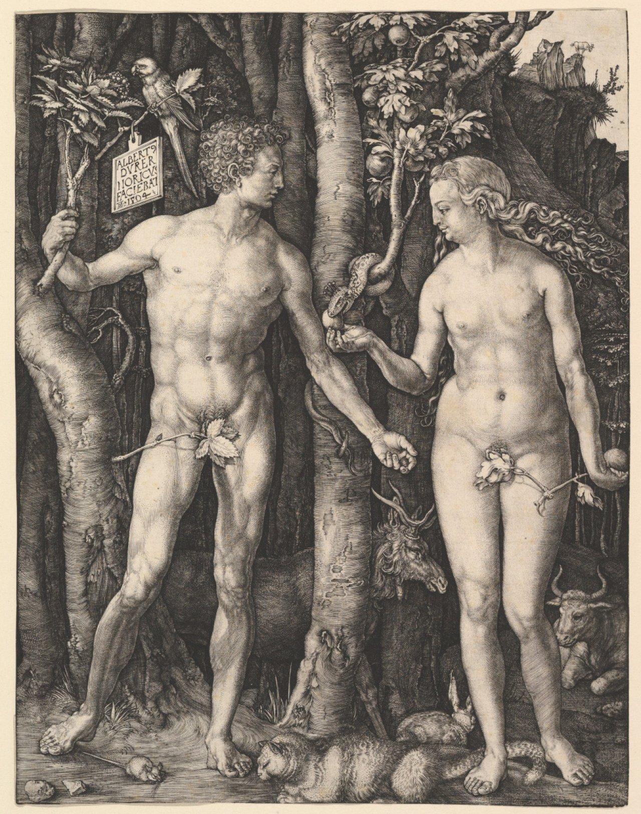 Гравюра «Адам и Ева», Альбрехт Дюрер